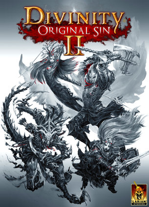 Divinity 2: Original Sin - Steam account